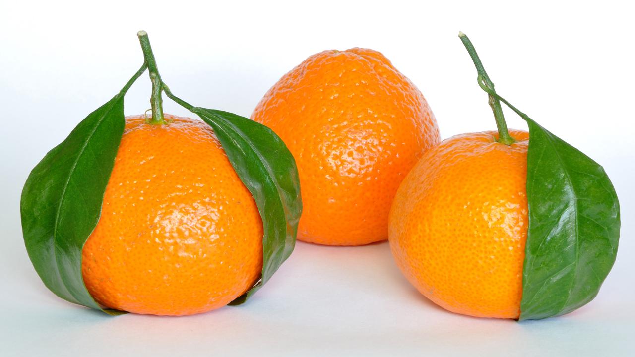 ozcelik-tarim-mandalina-2